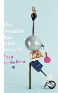 Het wonder dat niet omvalt | Ernest van der Kwast |