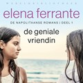 De geniale vriendin   Elena Ferrante  