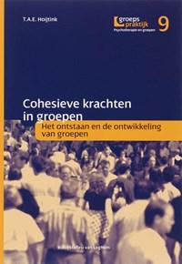 Cohesieve krachten in groepen | T.A.E. Hoijtink |