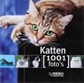 Katten | Y. Susic |