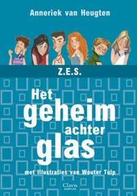 Een geheim achter glas | Anneriek van Heugten |