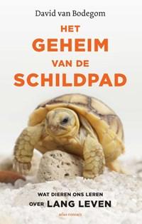 Het geheim van de schildpad   David van Bodegom  
