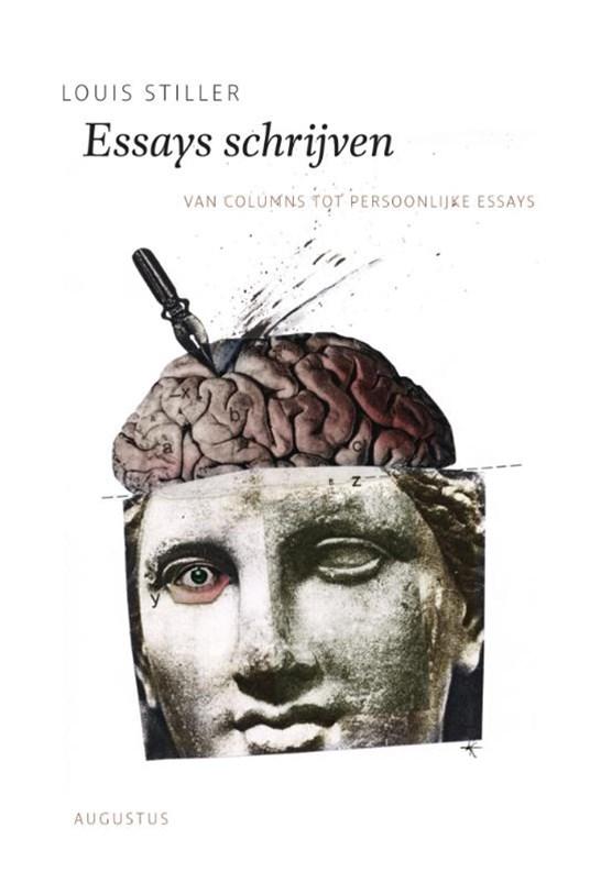 Essays schrijven