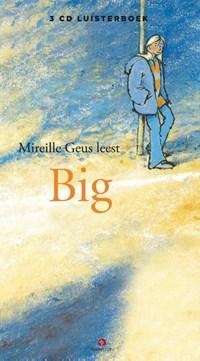 Big   Mireille Geus  
