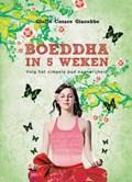 Boeddha in 5 weken | Giulio Cesare Giacobbe |