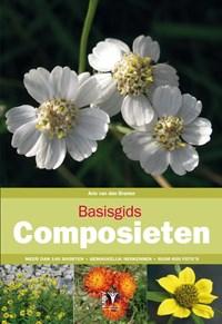 Basisgids composieten | Arie van den Bremer |