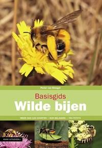 Basisgids Wilde bijen | Pieter van Breugel |