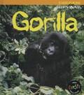 Gorilla   Rod Theodorou  