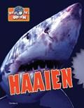 Haaien   Harris  
