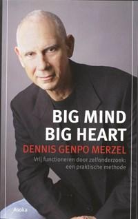 Big Mind | D.G. Merzel |