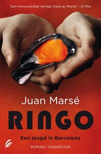 Ringo | Juan Marse |