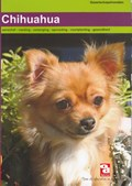 Chihuahua   auteur onbekend  