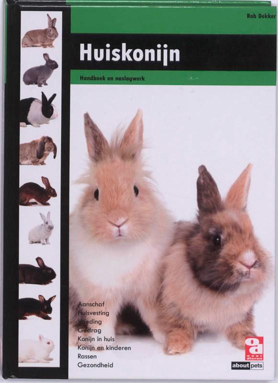 Huiskonijn