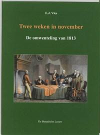 Twee weken in november | E.J. Vles ; J. Meihuizen |
