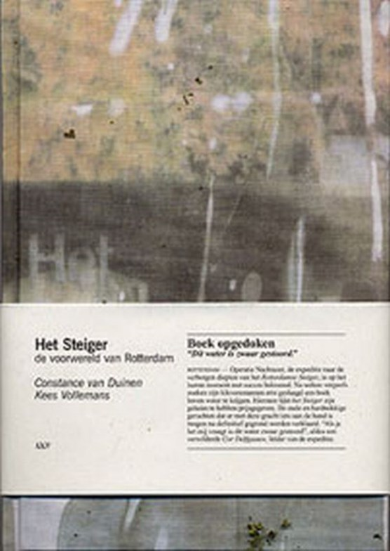 Het Steiger