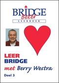 Leer bridge met Berry Westra 3 | B. Westra |