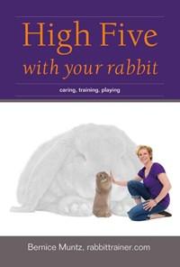 High five with your rabbit   Bernice Muntz  