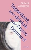 Tegenlicht, een triptiek naar Pierre Bonnard | Gabriel Josipovici |