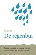 De regenbui   G. Roos  