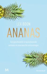 Ananas | Lex Boon |