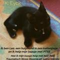Ik ben Leo, een hulphond in een kattenjasje en ik help mijn baasje met PTSS | K. Eyck |
