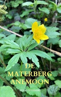 De Materberg anemoon | Ruud Offermans |