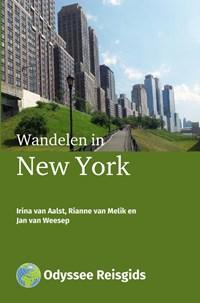 Wandelen in New York   Irina van Aalst ; Rianne van Melik ; Jan van Weesep  