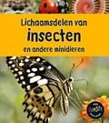 Lichaamsdelen van insecten   Clare Lewis  
