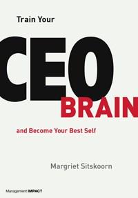 Train Your CEO Brain   Margriet Sitskoorn  