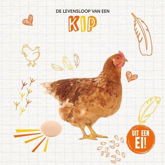 De levensloop van een kip