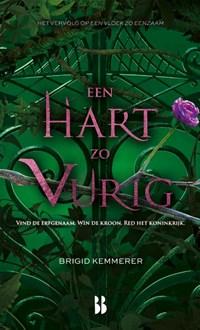 Een hart zo vurig | Brigid Kemmerer |