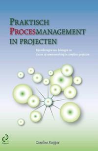 Praktisch procesmanagement in projecten   Caroline Kuijper  