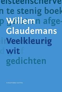 Veelkleurig wit | Willem Glaudemans |