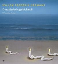 Volledige werken 17   Willem Frederik Hermans  