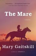 Mare   Mary Gaitskill  