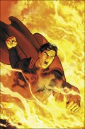 Superman The Final Days Of Superman | Peter J. Tomasi |
