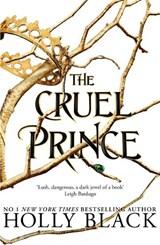 Folk of the air (01): cruel prince   Holly Black   9781471407277
