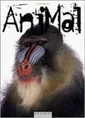 Animal   BALOG, James  