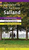 Wandelen in het hart van Salland - wandelgids | Maarten Metz |