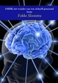EMDR, het wonder van een zichzelf genezend brein | Fokke Slootstra |