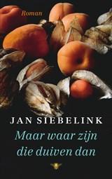 Maar waar zijn die duiven dan   Jan Siebelink   9789403183008