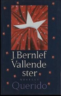 Vallende ster   J. Bernlef  