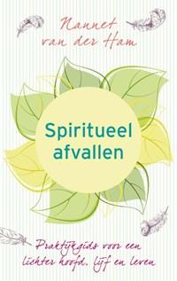 Spiritueel afvallen   Nannet van der Ham  