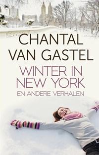 Winter in New York | Chantal van Gastel |