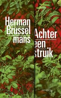 Achter een struik | Herman Brusselmans |