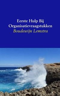 Eerste hulp bij organisatievraagstukken   Boudewijn Lemstra  