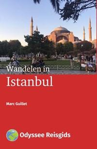 Wandelen in Istanbul | Marc Guillet |