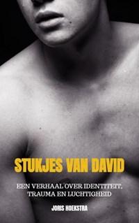 Stukjes van David | Joris Hoekstra |