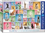 Yoga Dogs Puzzle | Eurographics Puzzels | 7777777777804