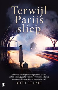 Terwijl Parijs sliep   Ruth Druart  